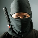Niche Website Ninja Strategy: Create and Rent Out Website Space to Local Businesses