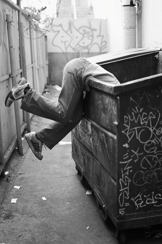 Money Making Ideas: Dumpster Diving